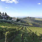 Tuscan-Countryside-Pronto-Travel