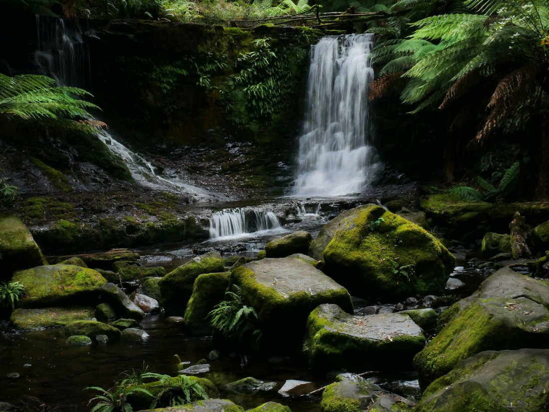 russell-falls-tasmania-small-group-tour